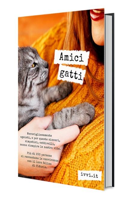 MockUp-AMICI_GATTI