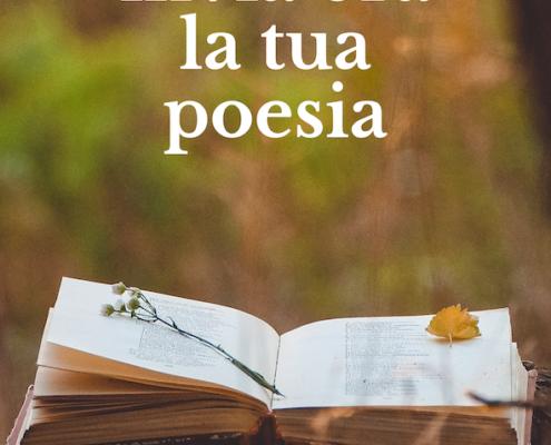 Cover con testo alternativo